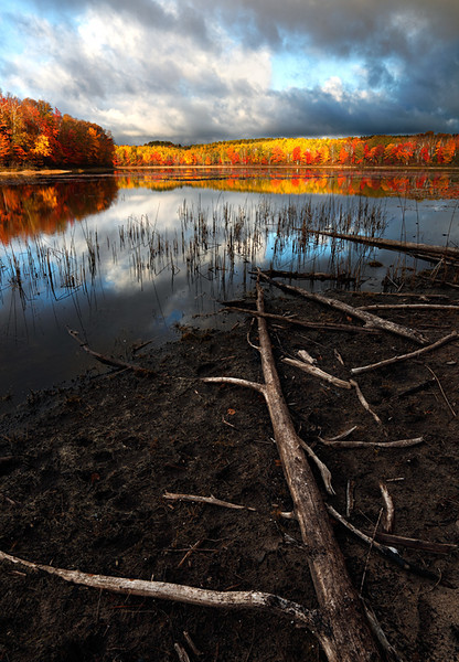 Driftwood Devolve II - Thornton Lake (Hiawatha National Forest - Upper Michigan)