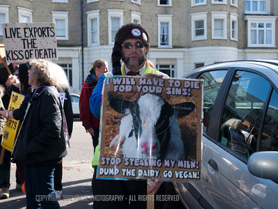 Animal Rights Demonstration