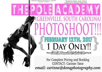 The Pole Academy (Greenville, South Carolina) 021217