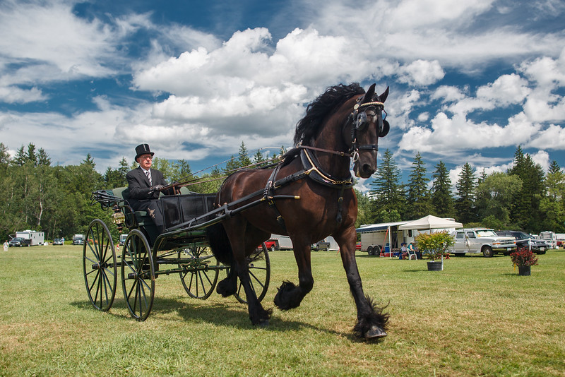 Carriage Show