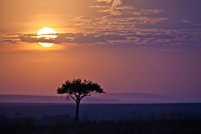 Kenya - 2012