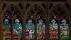 Troyes Catahedral - The Story of Daniel Window - The Triforium Panels