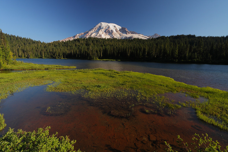 Mt. Rainier NP - Aug 201012.JPG