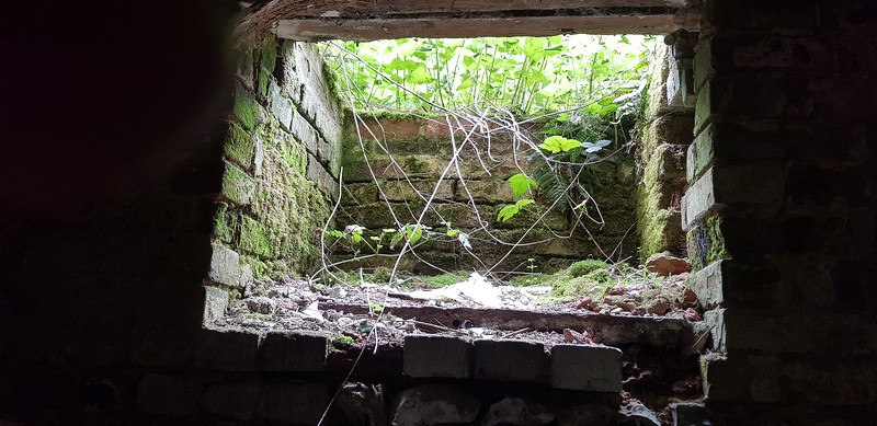 Was this opening similar to the cellar trap doors used in old Pubs..maybe used to throw logs down?...no idea.