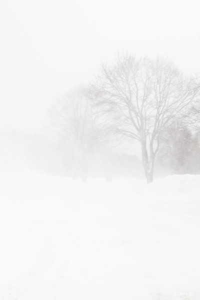 obscured by blowing snow