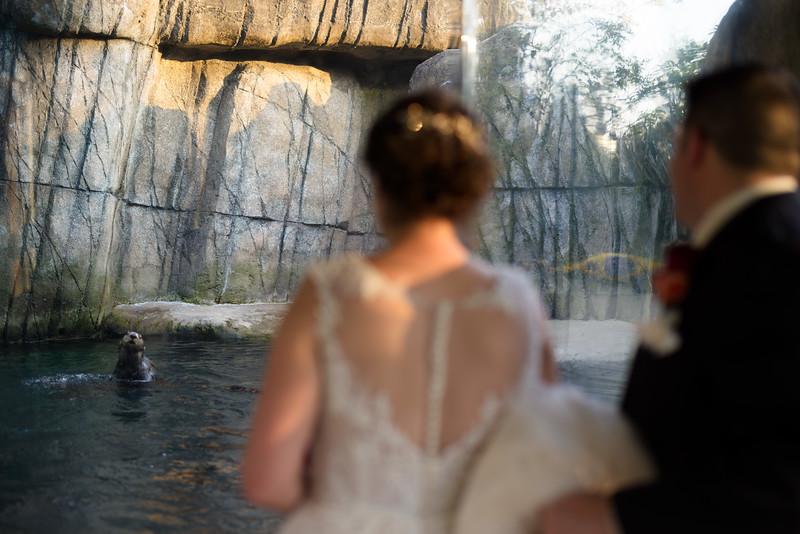 1462-Trybus-Wedding.jpg