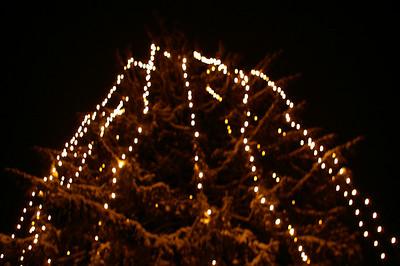 snow/xmas lights/subaru