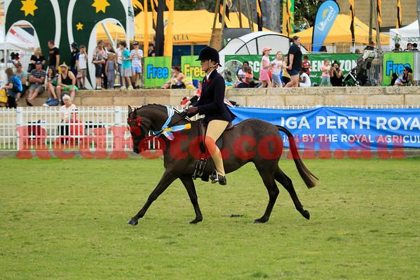 2014 10 01 Perth Royal Show Riding Pony Ridden