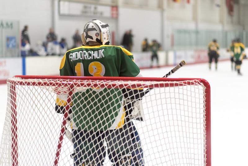Howard Ice Hockey-592.jpg