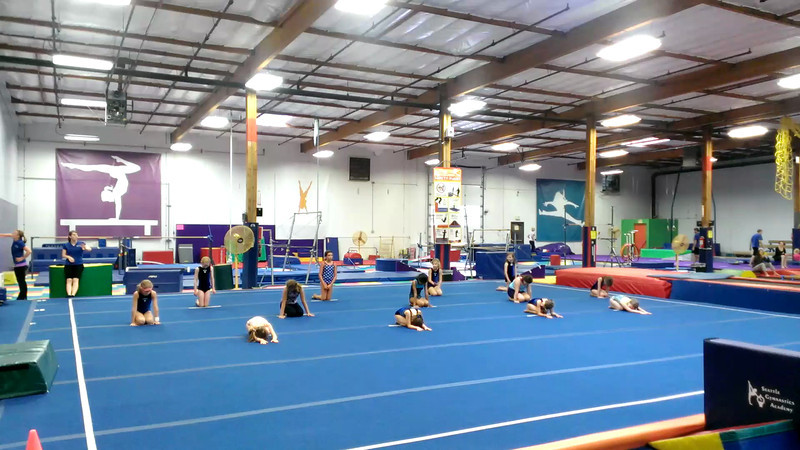 Gymnastics 2013