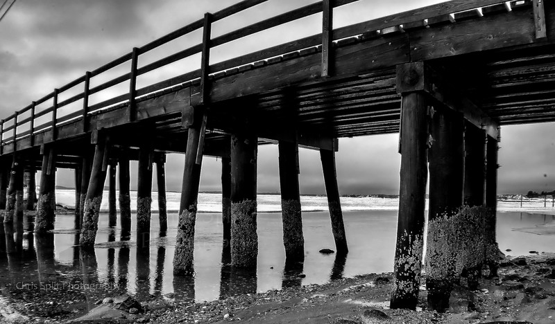 monument beach under bridge2 hdr bw.jpg