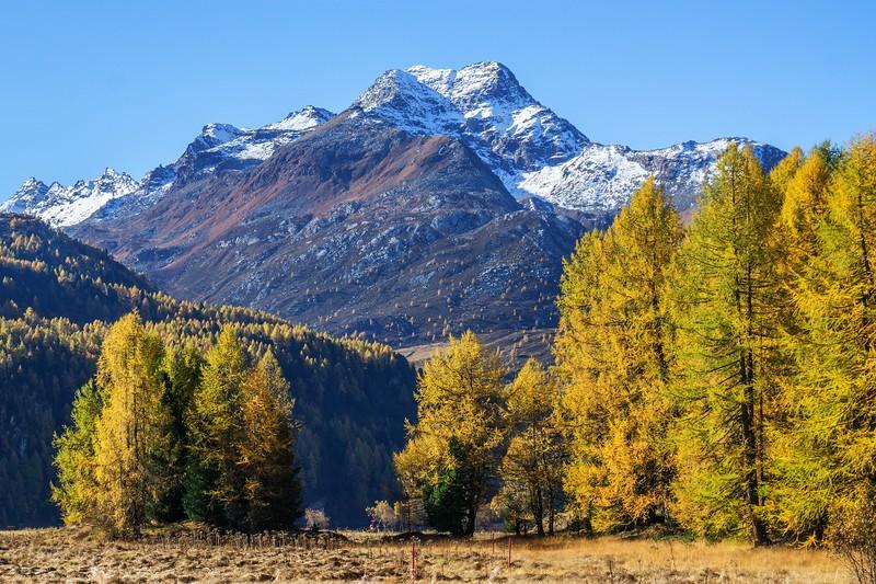 Goldener Oktober im Engadin - Piz de la Margna