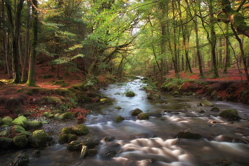 Tollymore Forest river long exposure.jpeg