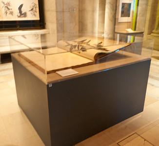 NY Public Library 2011 12 28