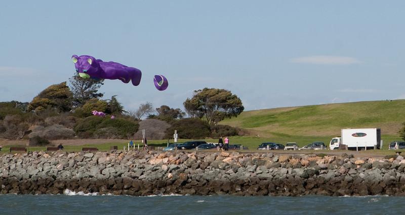 Kites flying over Cesar Chavez park  near OCSC.