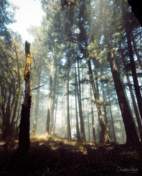 20100710_hiking_7944.jpg