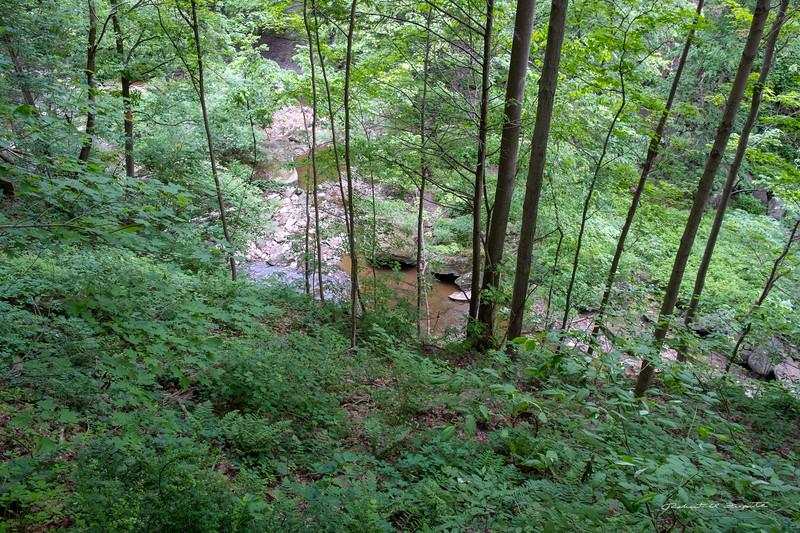 River below Brandywine Falls