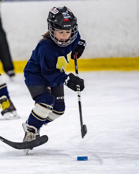 2019-02-04-Ryan-Naughton-Hockey-106.jpg