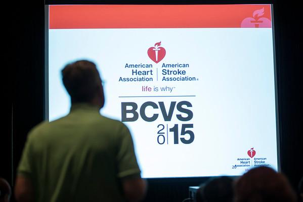 2015 BCVS Public