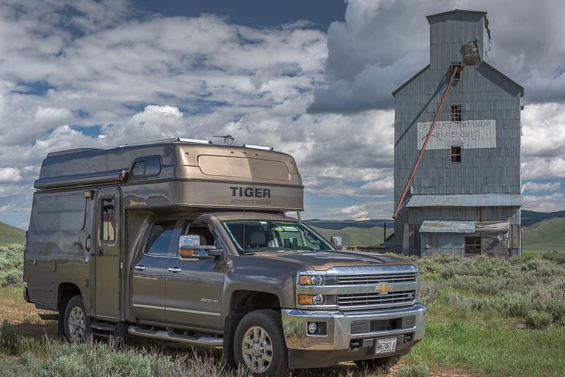 Tiger in Idaho-1.jpg