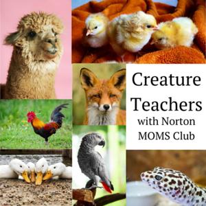 Creature Teachers with Norton MOMS
