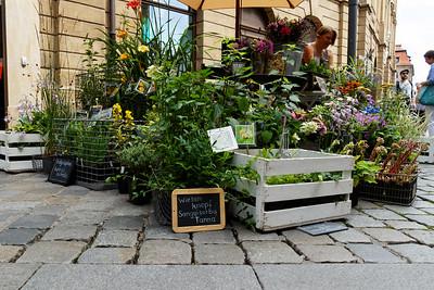 Bamberg 2017 / 07