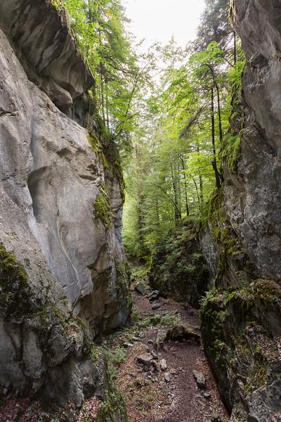 savoie-sixt-fer-a-cheval-foret-canyon-village-orage_D3_6710-HDR.jpg