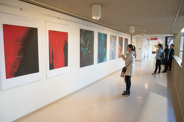 11/27/17 Visiting Artist Xinying Yu Artshow