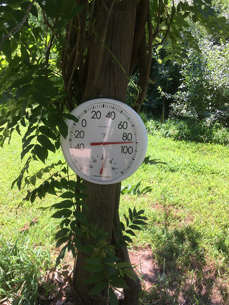 This set of readings were taken shortly after 1:10pm.  The radio said it was 95 or so.  The east deck registers over 100, the next hottest is one of the ones on the south deck, the others all coming in around 90.