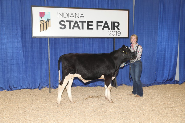Sunday, 8/4 Dairy Steers