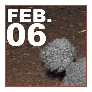 06 FEBRUARY