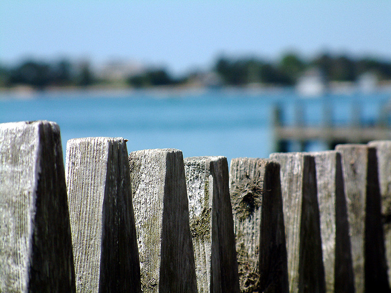 Woods Hole Harbor Fence.jpg