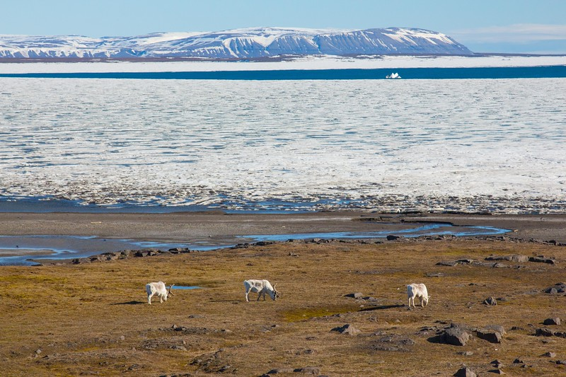 Svalbard - High Res-24.jpg