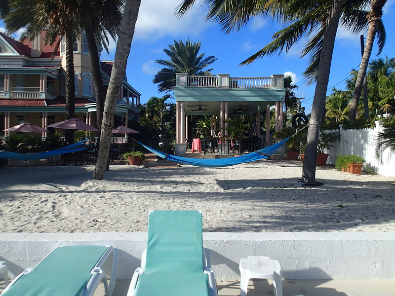 Southern most hammocks 3.JPG