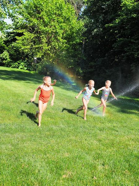 Flowers Lawnmower Sprinklers