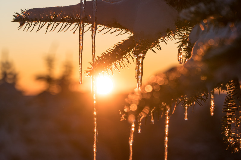 2019-12-06_SN_KS_December Snow-05291.jpg