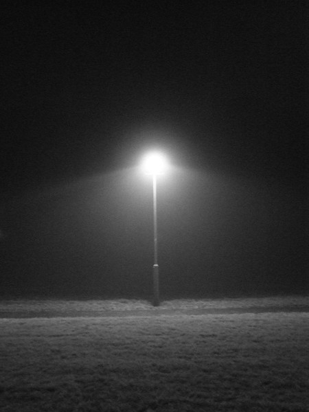 Street light in the fog