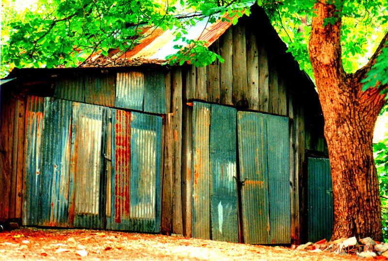 shed 4-9-2007.jpg