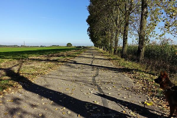 Autumn in Munnikenland