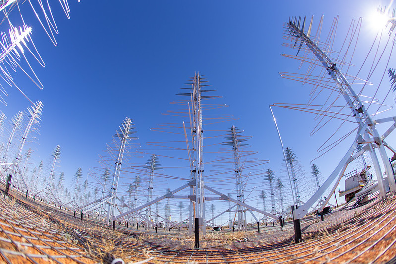 Antennas of the Aperture Array Verification System