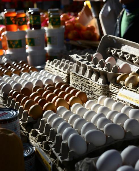 Eggstra-ordinary Light