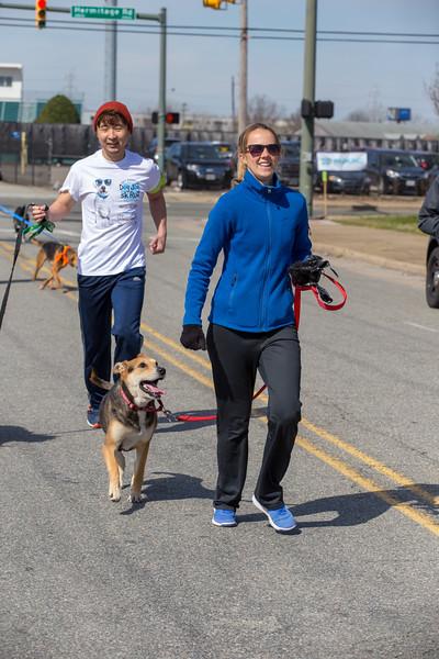 Richmond Spca Dog Jog 2018-665.jpg