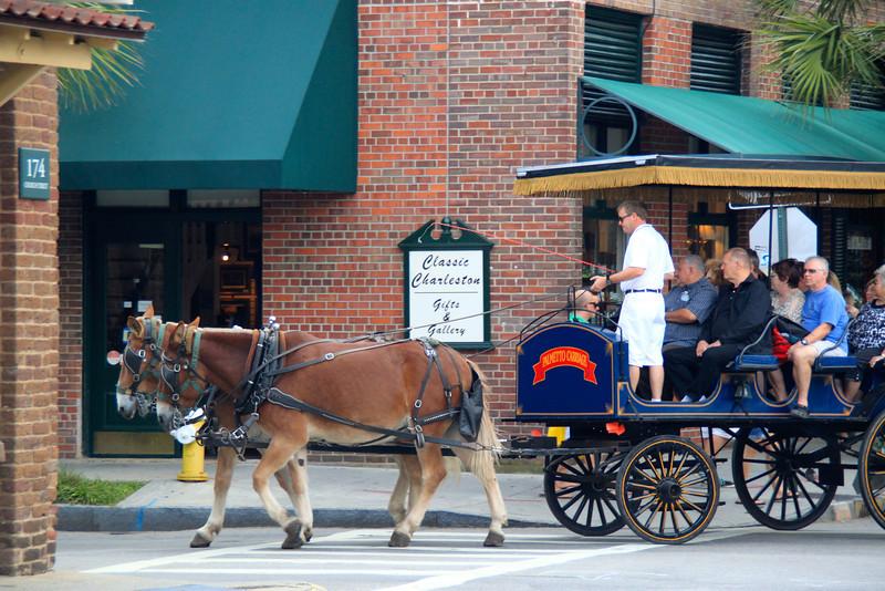 Carriage Tour of Charleston South Carolina