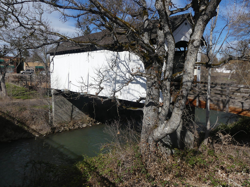 03-01-2021 Birthday Bridge Bash for Mo-43.JPG