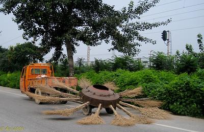 China, July 2008