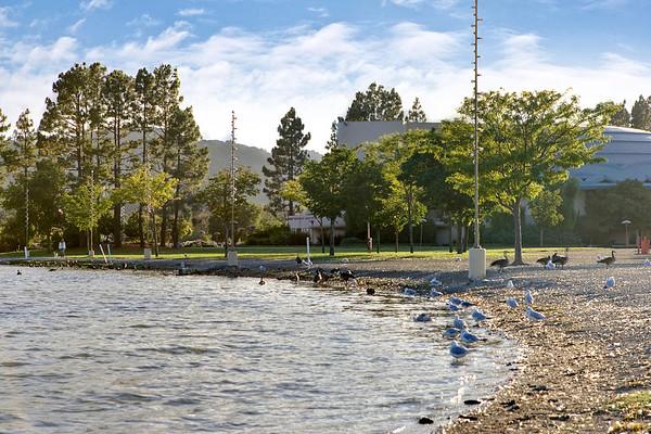 Santiago, San Rafael