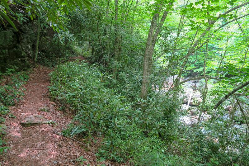 Bridges Camp Gap Trail -- 4,020'