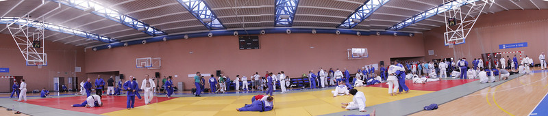 IJF World Veterans 2014