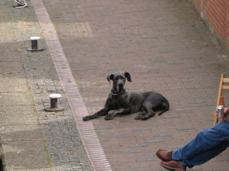 FTGwroxtonbanbury2010 277.jpg