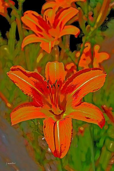 floral 6-17-2012.jpg